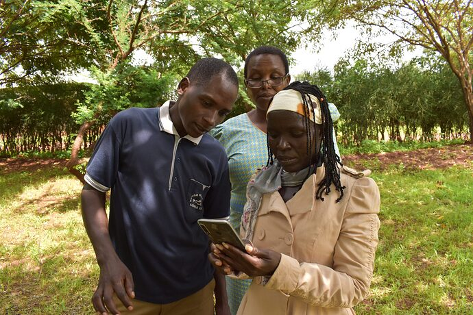 Three people looking at a mobile phone with trees in the background.